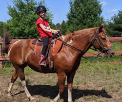 Teileanne 13 year old Paint mare